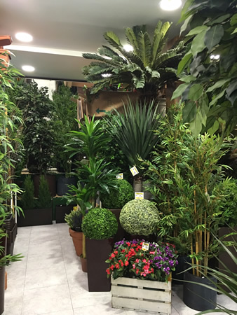 Plantas artificiales madrid - Plantas artificiales para interiores ...